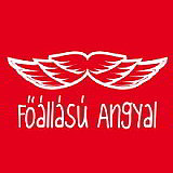 foallasu_angyal_s