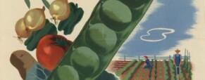 Második világháborús figyelmeztetést kaptak a britek