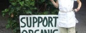 Közösségi mezőgazdaság: példák Európából és itthonról