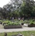 Community gardens in Hungary – research
