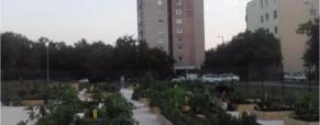 Békási kert átadó ünnepség