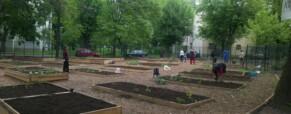 Elindult a Zengő kert is