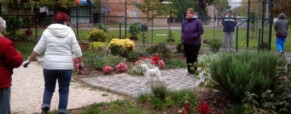 Szezonzáró kerti események