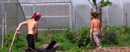 Filmajánló – Ők kiszálltak a mókuskerékből