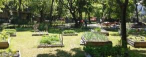A kert hangulata – Zengő kert