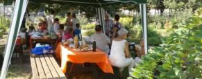 Ünnepeltek a közösségi kertekben