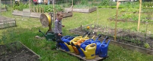 Zengő kert születésnap
