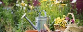 Új szezon, kerti feladatok kiosztása – táblázat