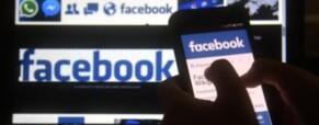 Választási kampány, FaceBook és közösségi kertek