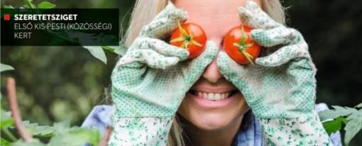 Top Agrár Magazin a városi kertészkedésről – online különszám